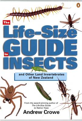The Life-Size Guide to Insects (Paperback)
