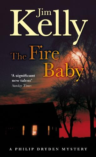 The Fire Baby (Paperback)