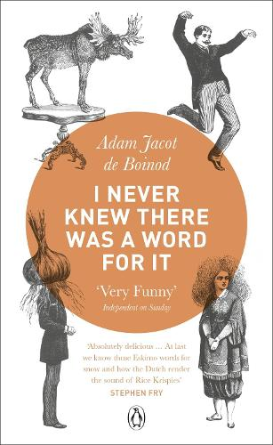 I Never Knew There Was a Word For It (Paperback)