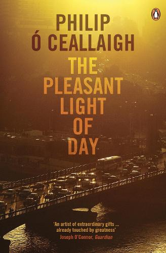 The Pleasant Light of Day (Paperback)