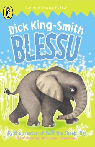 Blessu (Paperback)