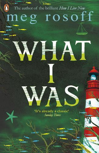 What I Was (Paperback)