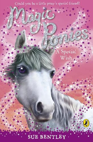 Magic Ponies: A Special Wish - Magic Ponies (Paperback)