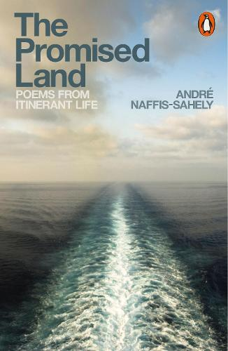 The Promised Land: Poems from Itinerant Life (Paperback)