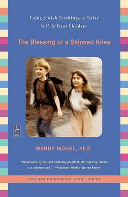 The Blessing of a Skinned Knee (Paperback)