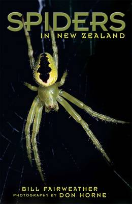Spiders in New Zealand (Paperback)