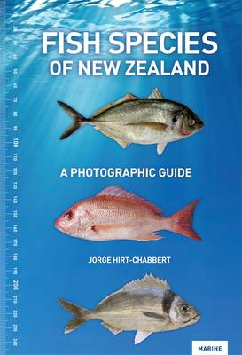 Fish Species of New Zealand: A Photographic Guide (Paperback)