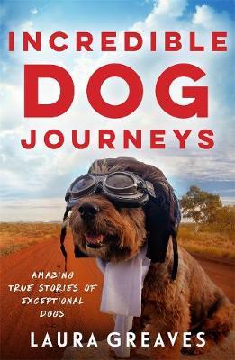 Incredible Dog Journeys (Paperback)