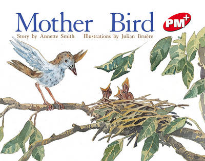 Mother Bird (Paperback)