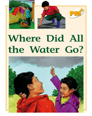 Where Did All the Water Go? (Paperback)