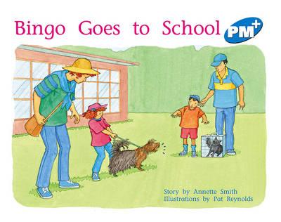Bingo Goes to School (Paperback)
