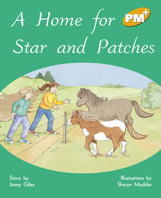 A Home for Star and Patches (Paperback)