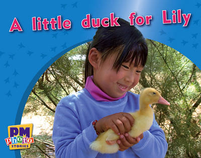 A little duck for Lily (Paperback)