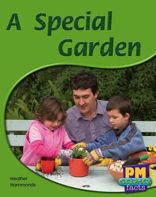 A Special Garden (Paperback)