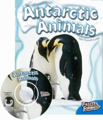 Antarctic Animals (Paperback)