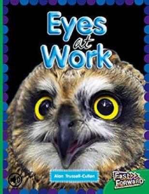 Eyes at Work (Paperback)