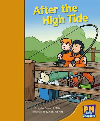 After the High Tide (Paperback)