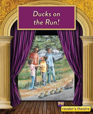 Ducks on the Run (Paperback)
