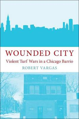 Wounded City: Violent Turf Wars in a Chicago Barrio (Paperback)