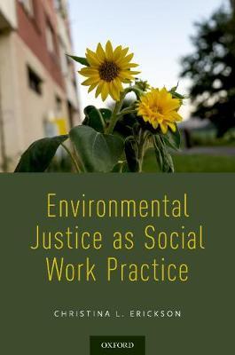 Environmental Justice as Social Work Practice (Paperback)