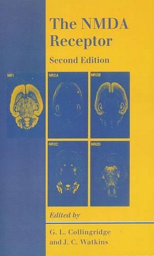 The NMDA Receptor (Paperback)