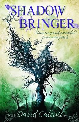 Shadow Bringer (Paperback)