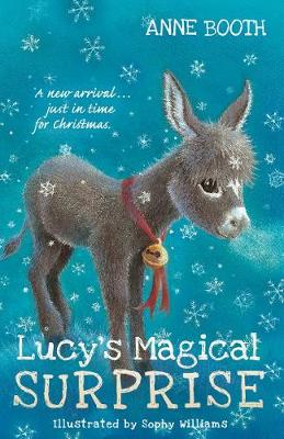 Lucy's Magical Surprise (Paperback)