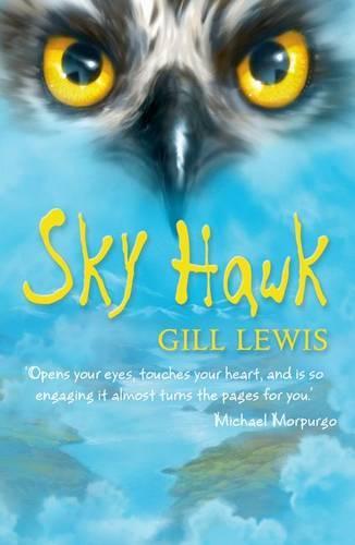 Sky Hawk (Paperback)