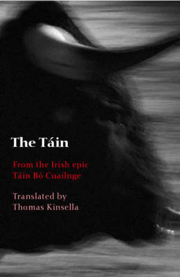 The Tain: From the Irish epic Tain Bo Cuailnge (Paperback)