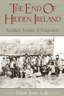 The End of Hidden Ireland: Rebellion, Famine and Emigration (Paperback)