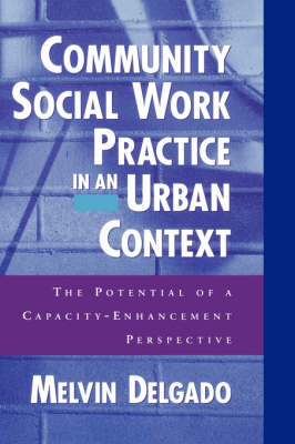 Community Social Work Practice in an Urban Context: The Potential of a Capacity Enhancement Perspective (Hardback)