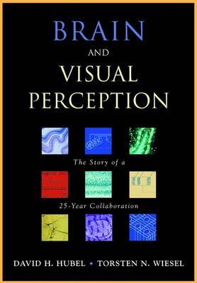Brain and Visual Perception: The Story of a 25-year Collaboration (Hardback)