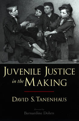 Juvenile Justice in the Making - Studies in Crime and Public Policy (Paperback)