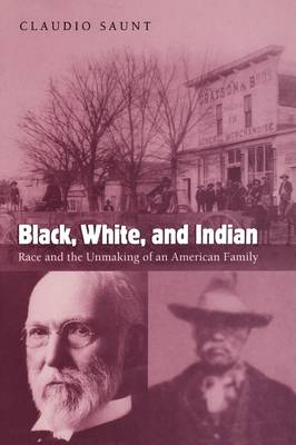 Black, White, and Indian: Race and the Unmaking of an American Family (Paperback)