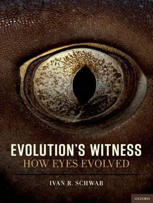 Evolution's Witness: How eyes evolved (Hardback)