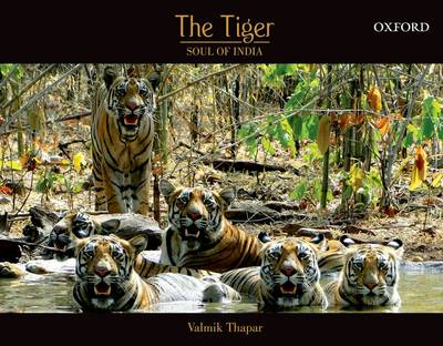 The Tiger: Soul of India (Hardback)