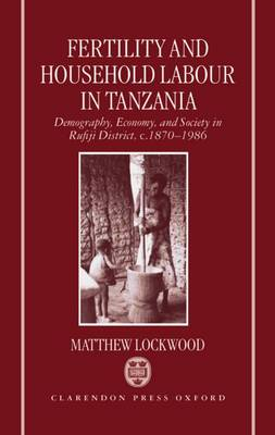 Fertility and Household Labour in Tanzania: Demography, Economy, and Society in Rufiji District, c.1870-1986 (Hardback)