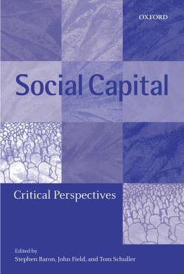 Social Capital: Critical Perspectives (Hardback)