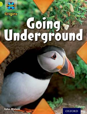 Project X Origins: Lime Book Band, Oxford Level 11: Underground: Going Underground - Project X Origins (Paperback)