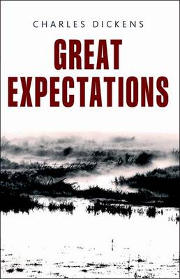 Rollercoasters: Great Expectations - Rollercoasters (Paperback)