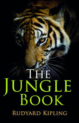 Rollercoaster: The Jungle Book - Rollercoaster