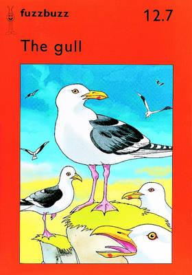 Fuzzbuzz: Storybooks Level 2B: A Remedial Reading Scheme