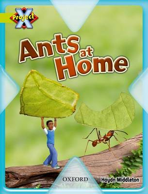 Project X: Underground: Ants at Home (Paperback)