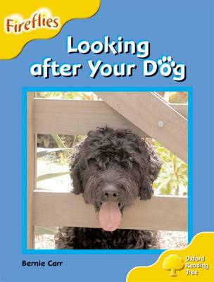 Oxford Reading Tree: Level 5: Fireflies: Looking After your Dog - Oxford Reading Tree (Paperback)