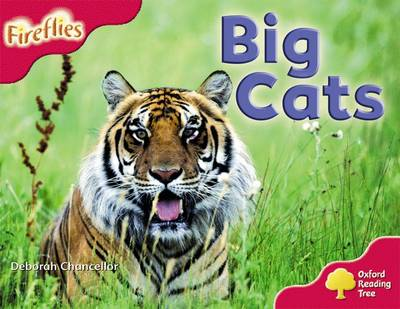 Oxford Reading Tree: Level 4: More Fireflies A: Big Cats - Oxford Reading Tree (Paperback)