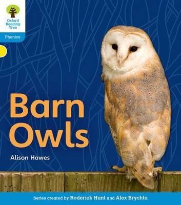 Oxford Reading Tree: Level 3: Floppy's Phonics Non-Fiction: Barn Owls - Oxford Reading Tree (Paperback)