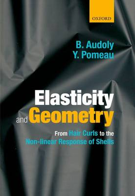 Elasticity and Geometry: From hair curls to the non-linear response of shells (Hardback)