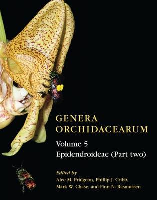Genera Orchidacearum Volume 5: Epidendroideae (Part II) - Genera Orchidacearum (Hardback)