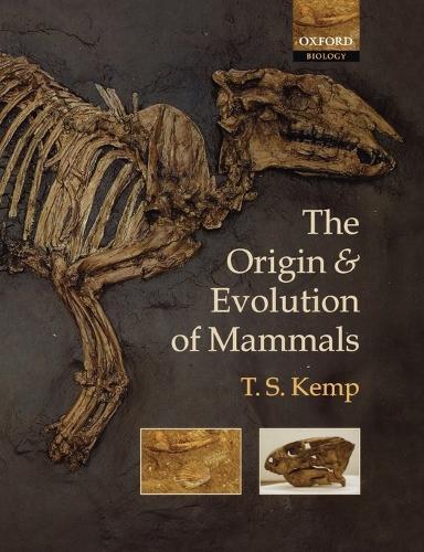 The Origin and Evolution of Mammals (Paperback)