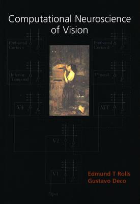 Computational Neuroscience of Vision (Hardback)